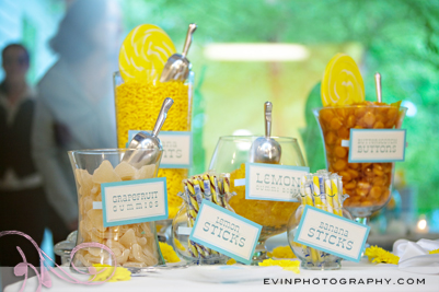 real_nashville_wedding_candy_buffet